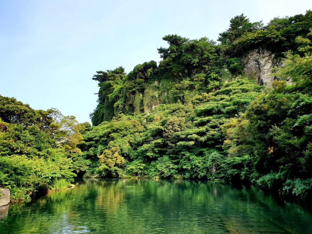 この画像には alt 属性が指定されておらず、ファイル名は 熱帯雨林-O-DAN-1024x768.jpg です